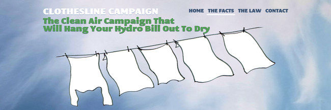 Clothesline Campaign, website design, homepage screenshot